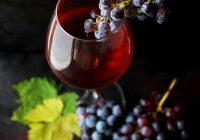 Jysk Vin – Den bedste vin i verden